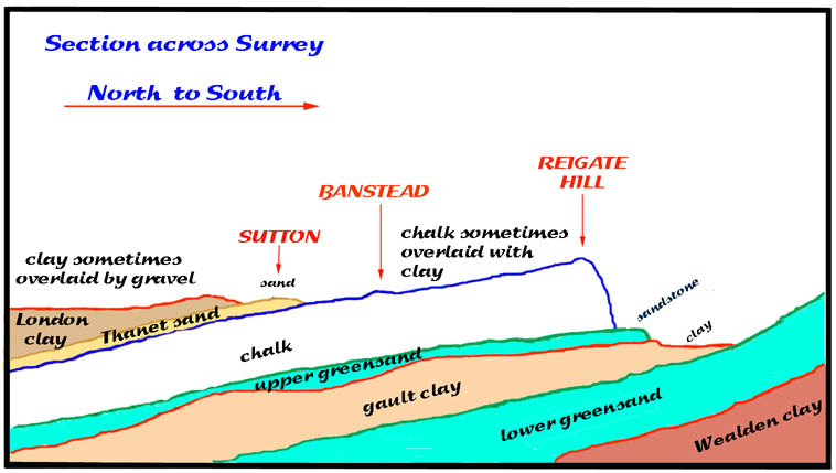 geology - section through Surrey